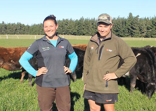 Rakaia Island | Dairy Farming | Our Farms | Drystock